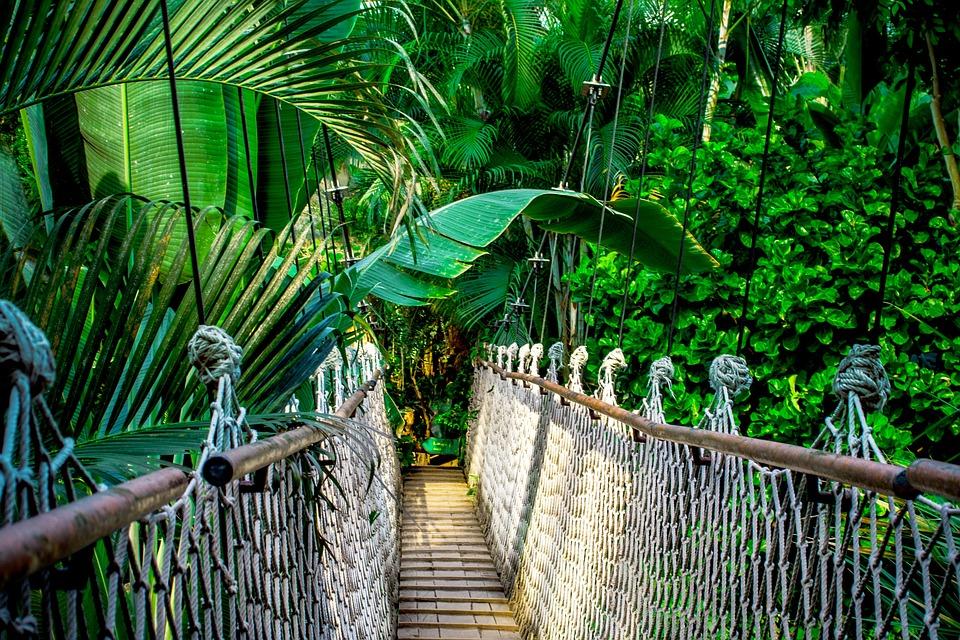 El destino perfecto para viajar con niños-Amazonas